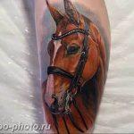 фото тату лошадь 24.12.2018 №084 - photo horse tattoo - tattoo-photo.ru