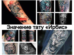 Значение тату Ирбис - информация о рисунке и фото примеры интересных татуировок