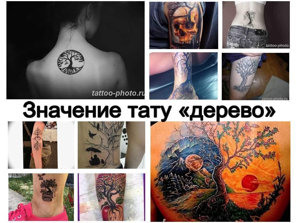 Значение тату дерево - коллекция фото примеров готовых рисунков татуировки