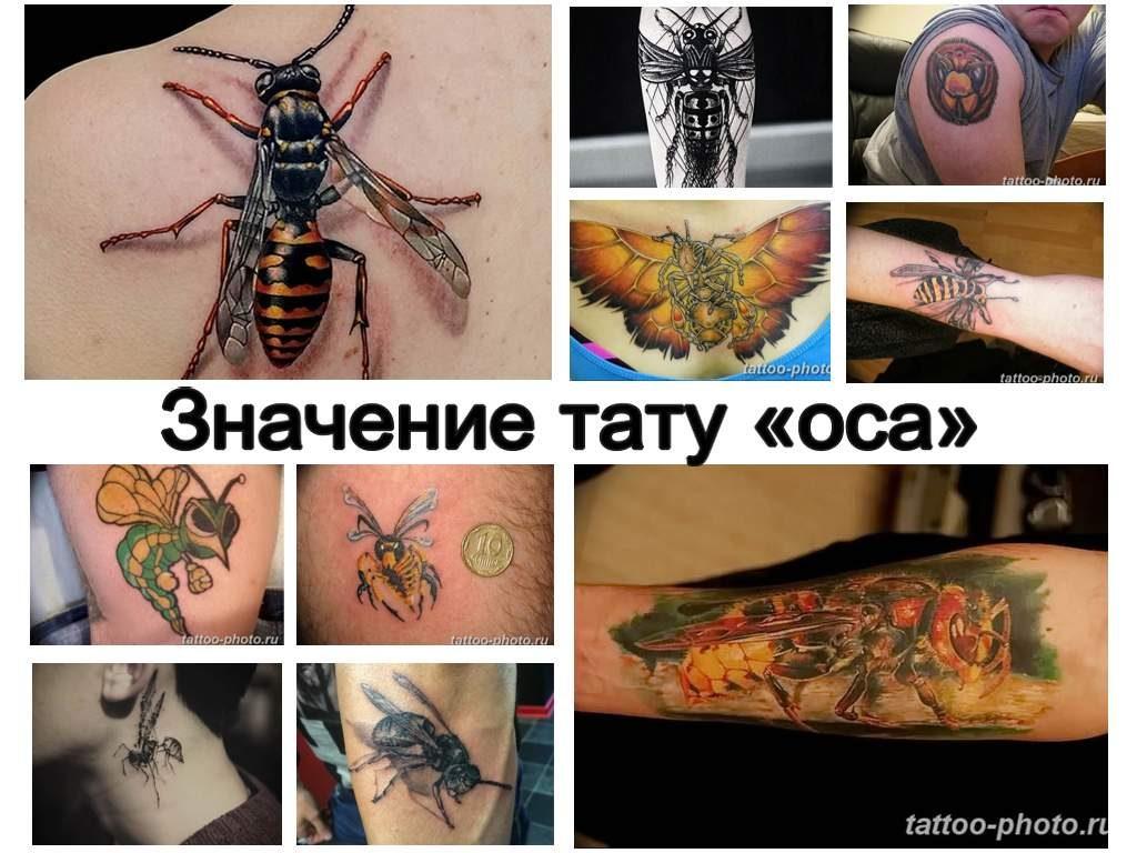 Значение тату оса - коллекция рисунков готовых татуировок на фото