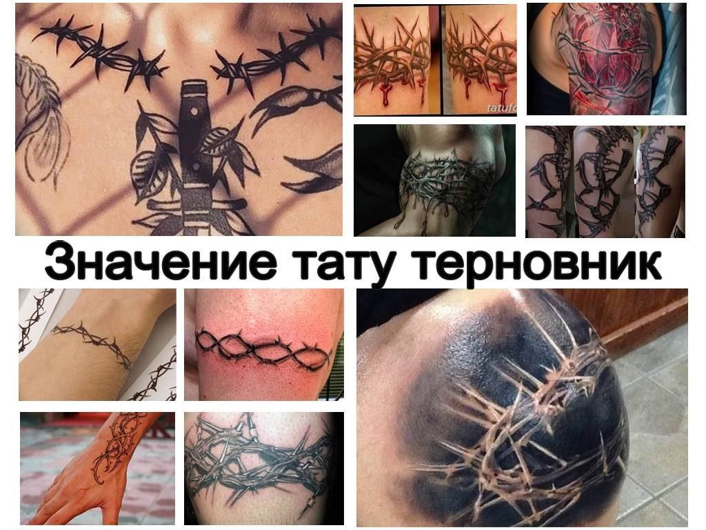 Значение тату терновник - коллекция фото примеров рисунка татуировки