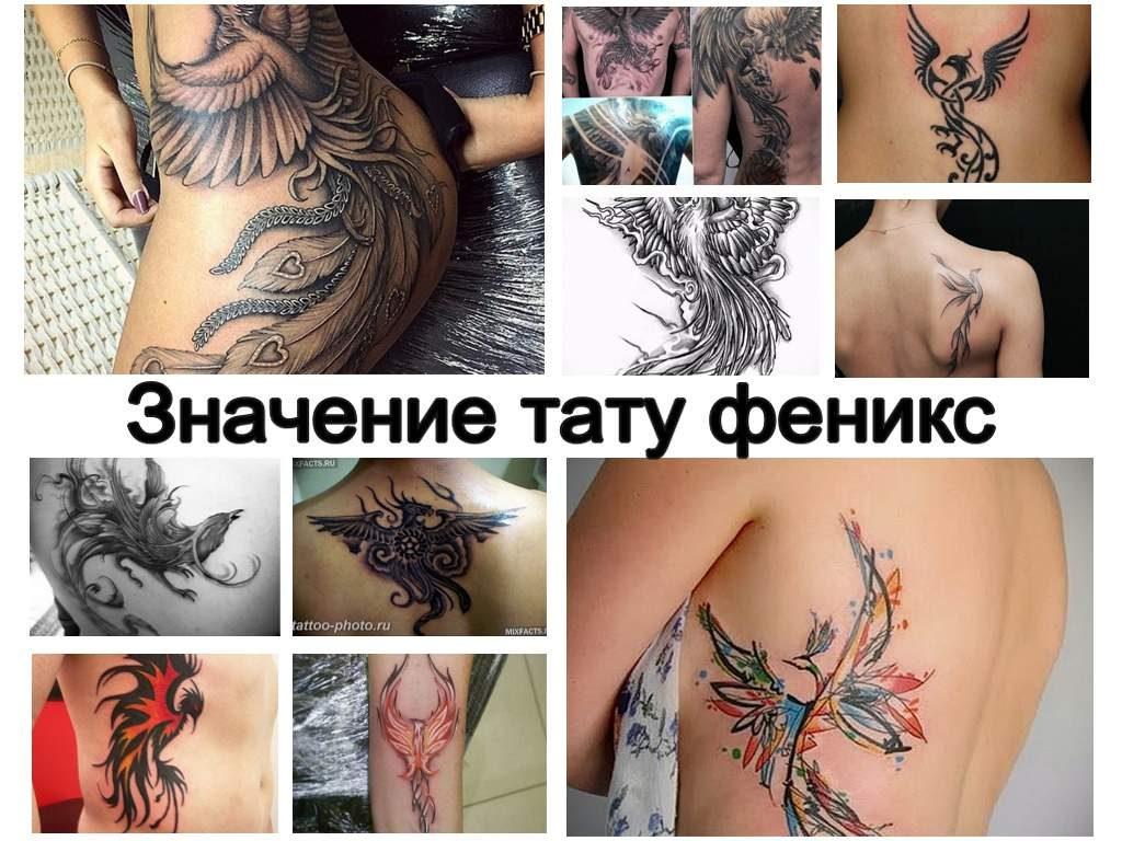 Значение тату феникс - информация о рисунке и фото примеры готовых татуировок