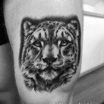 Фото рисунка Тату снежный барс 20.11.2018 №050 - Tattoo snow leopard - tattoo-photo.ru