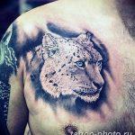 Фото рисунка Тату снежный барс 20.11.2018 №069 - Tattoo snow leopard - tattoo-photo.ru
