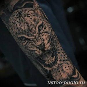 Фото рисунка Тату снежный барс 20.11.2018 №080 - Tattoo snow leopard - tattoo-photo.ru