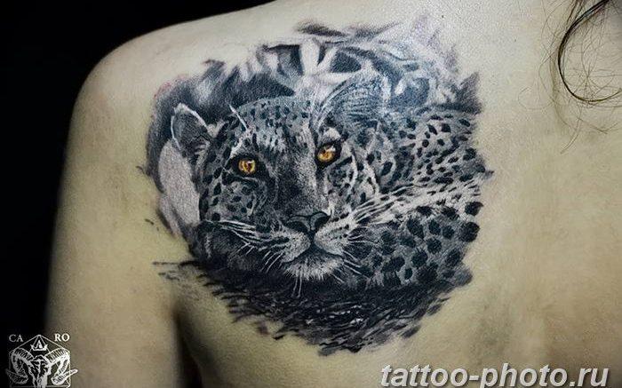 Фото рисунка Тату снежный барс 20.11.2018 №101 - Tattoo snow leopard - tattoo-photo.ru