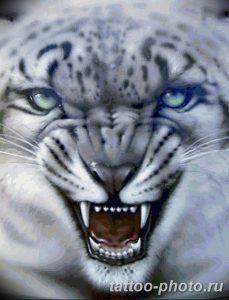 Фото рисунка Тату снежный барс 20.11.2018 №110 - Tattoo snow leopard - tattoo-photo.ru