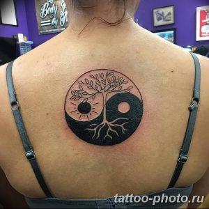 Фото рисунка тату Инь-Янь 08.11.2018 №057 - photo tattoo Yin-Yang - tattoo-photo.ru