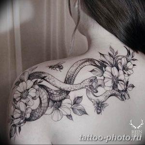 Фото рисунка тату змея 23.11.2018 №020 - snake tattoo photo - tattoo-photo.ru