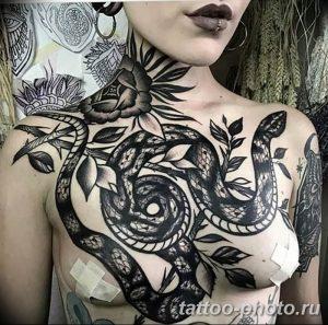 Фото рисунка тату змея 23.11.2018 №022 - snake tattoo photo - tattoo-photo.ru