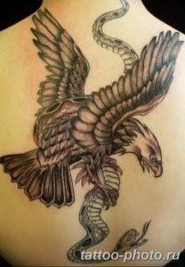 Фото рисунка тату змея 23.11.2018 №039 - snake tattoo photo - tattoo-photo.ru