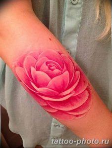 Фото рисунка тату камелия 24.11.2018 №009 - photo tattoo camellia - tattoo-photo.ru