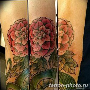 Фото рисунка тату камелия 24.11.2018 №014 - photo tattoo camellia - tattoo-photo.ru
