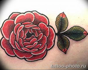 Фото рисунка тату камелия 24.11.2018 №028 - photo tattoo camellia - tattoo-photo.ru