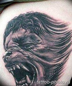 Фото рисунка тату оборотень 24.11.2018 №057 - photo tattoo werewolf - tattoo-photo.ru