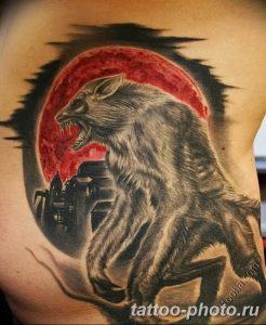 Фото рисунка тату оборотень 24.11.2018 №060 - photo tattoo werewolf - tattoo-photo.ru