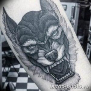 Фото рисунка тату оборотень 24.11.2018 №082 - photo tattoo werewolf - tattoo-photo.ru