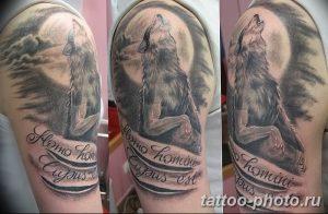 Фото рисунка тату оборотень 24.11.2018 №088 - photo tattoo werewolf - tattoo-photo.ru