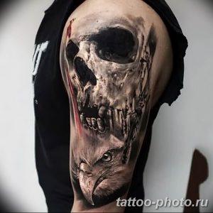 Фото рисунка тату череп 24.11.2018 №212 - photo tattoo skull - tattoo-photo.ru