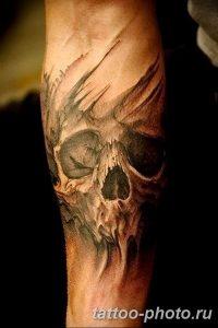 Фото рисунка тату череп 24.11.2018 №293 - photo tattoo skull - tattoo-photo.ru