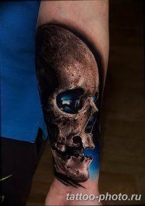Фото рисунка тату череп 24.11.2018 №466 - photo tattoo skull - tattoo-photo.ru