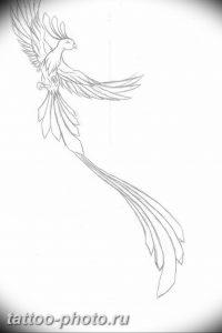 фото идеи тату феникс 18.12.2018 №324 - photo ideas tattoo phoenix - tattoo-photo.ru