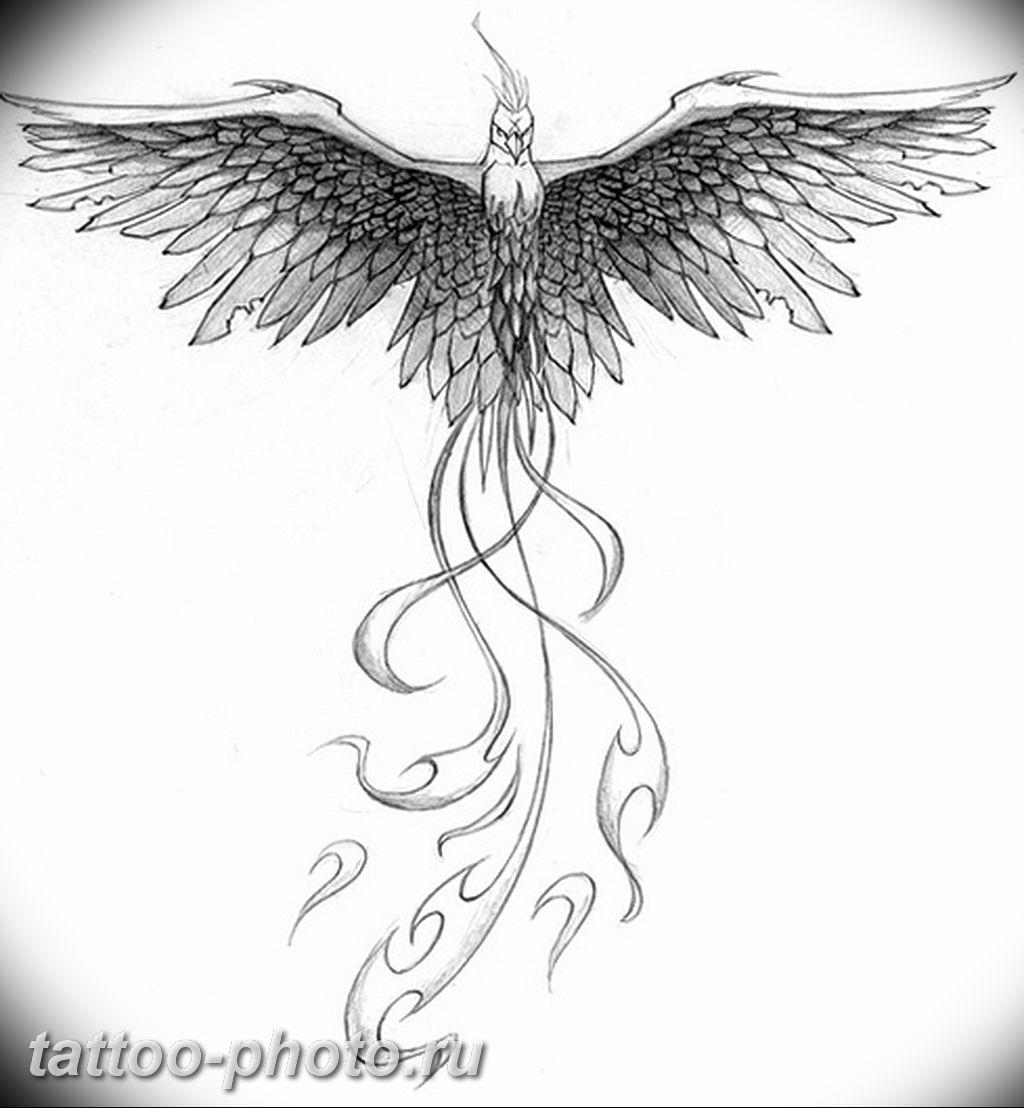 рисунки феникса для татуировок обладал очень сложным