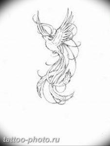 фото идеи тату феникс 18.12.2018 №642 - photo ideas tattoo phoenix - tattoo-photo.ru