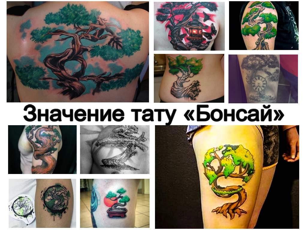 Значение тату Бонсай - коллекция фото примеров рисунков готовых татуировок