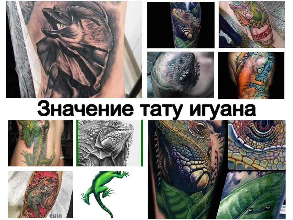 Значение тату игуана - коллекция фото примеров интересных рисунков татуировки