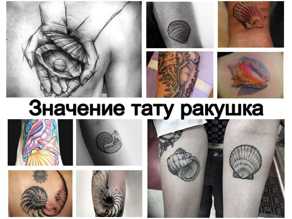 Значение тату морская ракушка - коллекция оригинальных рисунков татуировки на фото