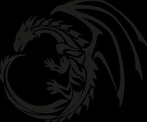 Фото рисунка тату дракон 12.10.2018 №076 - dragon tattoo - tattoo-photo.ru