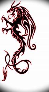 Фото рисунка тату дракон 12.10.2018 №104 - dragon tattoo - tattoo-photo.ru