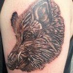 Фото рисунка тату кабан 11.10.2018 №073 - boar tattoo - tattoo-photo.ru
