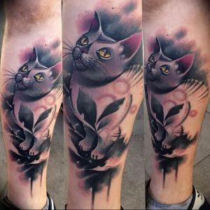 Фото рисунка тату кошка 09.10.2018 №150 - cat tattoo - tattoo-photo.ru