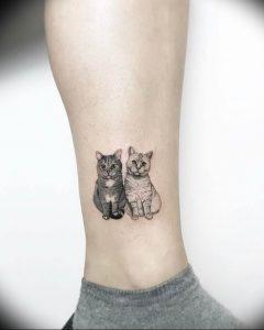 Фото рисунка тату кошка 09.10.2018 №216 - cat tattoo - tattoo-photo.ru
