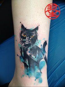 Фото рисунка тату кошка 09.10.2018 №217 - cat tattoo - tattoo-photo.ru