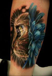 Фото рисунка тату кошка 09.10.2018 №242 - cat tattoo - tattoo-photo.ru