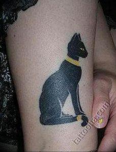 Фото рисунка тату кошка 09.10.2018 №262 - cat tattoo - tattoo-photo.ru