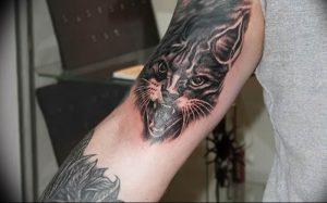 Фото рисунка тату кошка 09.10.2018 №277 - cat tattoo - tattoo-photo.ru