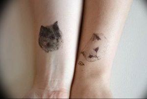 Фото рисунка тату кошка 09.10.2018 №304 - cat tattoo - tattoo-photo.ru