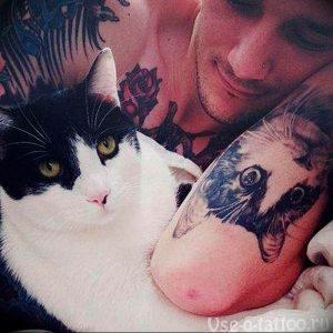 Фото рисунка тату кошка 09.10.2018 №309 - cat tattoo - tattoo-photo.ru
