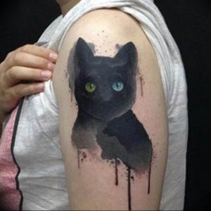 Фото рисунка тату кошка 09.10.2018 №333 - cat tattoo - tattoo-photo.ru
