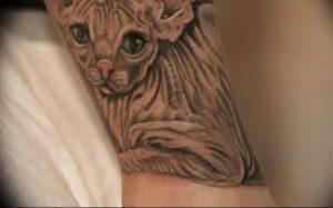 Фото рисунка тату кошка 09.10.2018 №384 - cat tattoo - tattoo-photo.ru