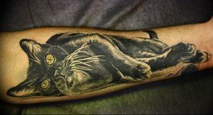 Фото рисунка тату кошка 09.10.2018 №393 - cat tattoo - tattoo-photo.ru