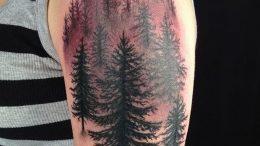Фото рисунка тату сосна 11.10.2018 №049 - pine tattoo - tattoo-photo.ru