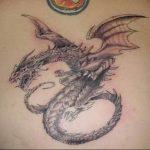 Фото татуировки дракон от 24.09.2018 №066 - dragon tattoo - tattoo-photo.ru
