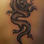 Фото татуировки дракон от 24.09.2018 №082 - dragon tattoo - tattoo-photo.ru