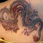 Фото татуировки дракон от 24.09.2018 №088 - dragon tattoo - tattoo-photo.ru