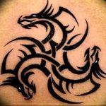 Фото татуировки дракон от 24.09.2018 №148 - dragon tattoo - tattoo-photo.ru